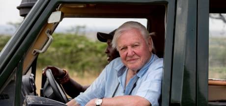 David Attenborough (94) heeft binnen twee uur 660.000 volgers op Instagram