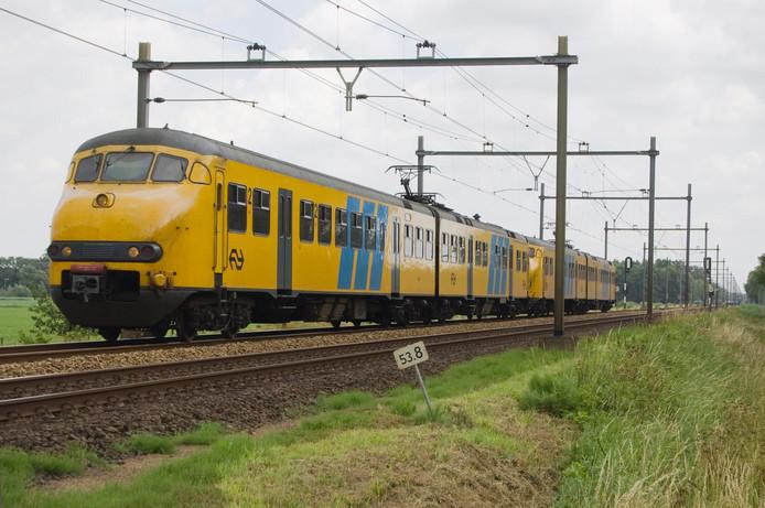 De apekop op het spoor nabij Wijchen.