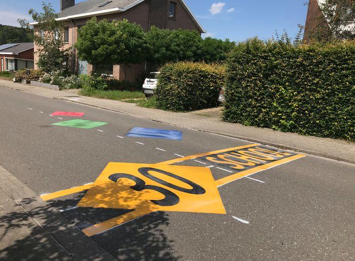 Een voorbeeld van hoe de wegmarkering er in Kaprijke zou kunnen uitzien (archiefbeeld uit Leuven).