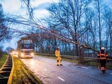Zware storm geluwd, wel code geel; windstoten zorgen voor stormschade in Zuidoost-Brabant