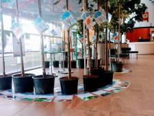 35.000 bomen planten in Hof van Twente, voor elke inwoner één