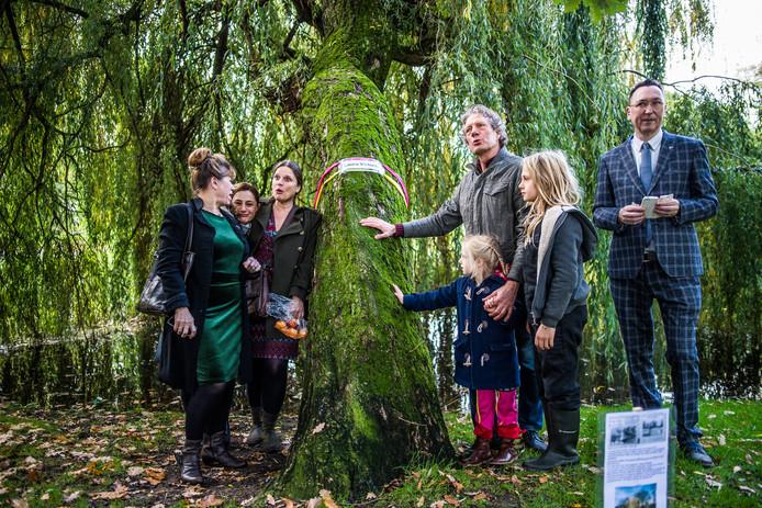Leden van de Werkgroep Behoud Bomen Arnhem koesteren treurwilg 'Laura Victoria' in stadspark Lauwersgracht in Arnhem.