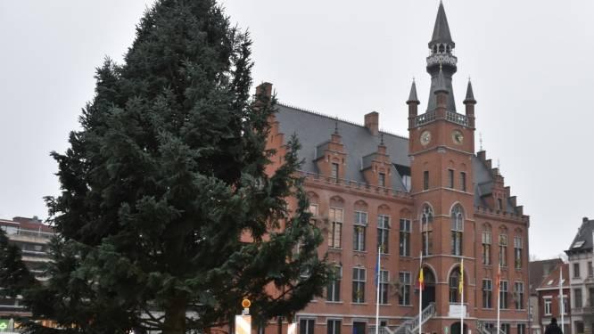 De grootste van het Meetjesland? Kerstboom van 14 meter hoog op Markt Maldegem