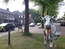 Dichte Structuurweg in Schijndel leidt tot 'gekkenhuis'