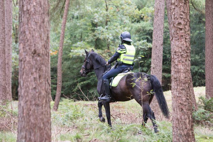 Zoekactie naar Anne Faber in de bossen van Baarn en Lage Vuursche