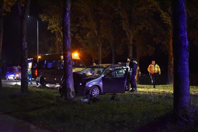Een automobilist is vrijdagavond tegen een boom langs de Rijksweg-Noord in Elst gereden.