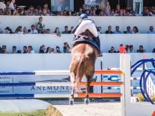 Outdoor Gelderland is (eikenprocessie)rups-proof; paard en mens 'veilig' in Arnhem