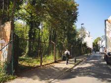 Verkavelingsaanvraag geweigerd: bosje in de Akkerstraat blijft voorlopig staan