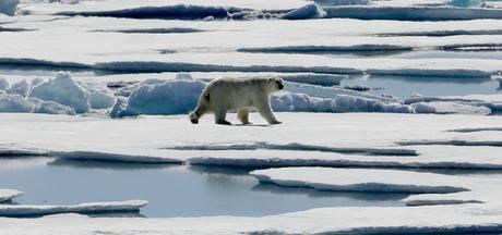 Wetenschappers waarschuwen: 'Opnieuw opwarming van de aarde in 2017'