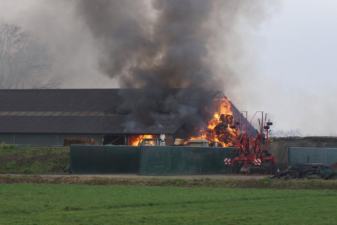 In een geitenstal in Dongen is donderdag een grote brand uitgebroken.