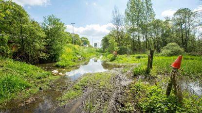 Tragisch ongeval in Affligem: vrouw rijdt zich vast en verdrinkt in moerasgebied