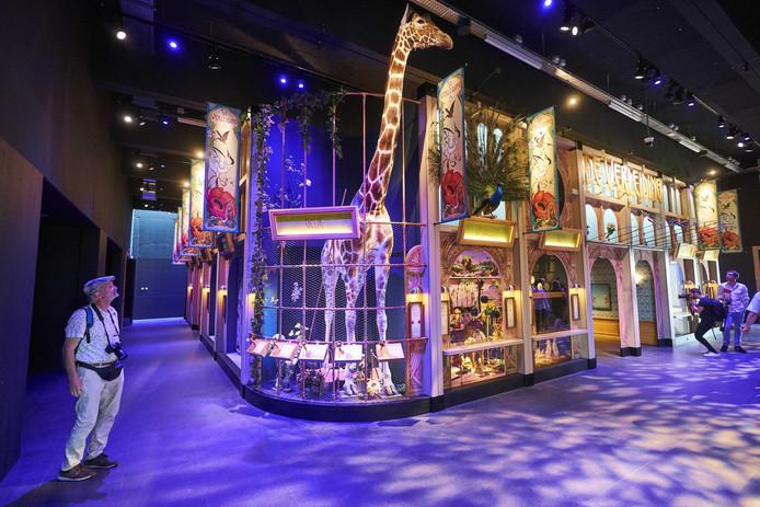 Een bezoeker bekijkt een expositie in het vernieuwde Naturalis.