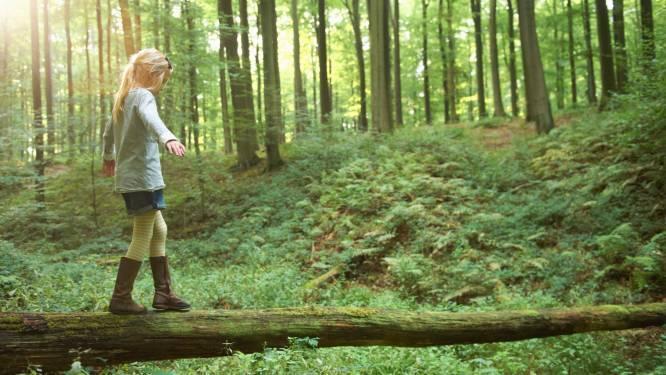 Een nieuwe serie knallen of wandelen in Waasland: met deze 7 tips maak je er een heerlijk weekend van