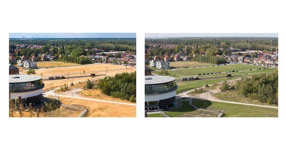 Links: zo zag het er op vele plaatsen uit aan het begin van de zomer in 2018. Droogte zorgde voor grote problemen in Limburg. Rechts: dezelfde plek eind augustus, nadat enkele regenbuien redding brachten.