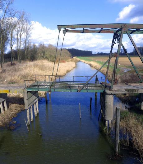 Groeten uit de water- en windrijke Biesbosch