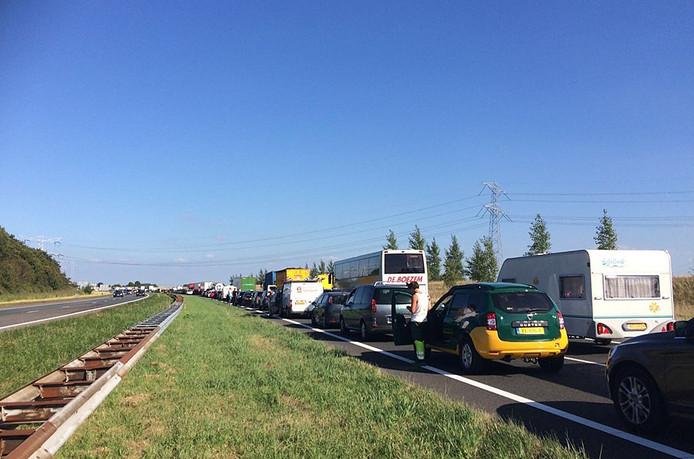 Het verkeer op de A58 staat - in de richting van Bergen op Zoom - vast voor de Vlaketunnel.