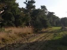 Masturberende man op heterdaad betrapt in bosgebied Tilburg
