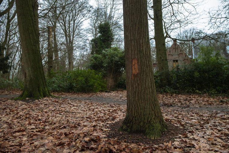 Bomen die gekapt moeten worden, werden al gemarkeerd.