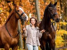 Van Zwambagt naar olympische stal VanSilfhout