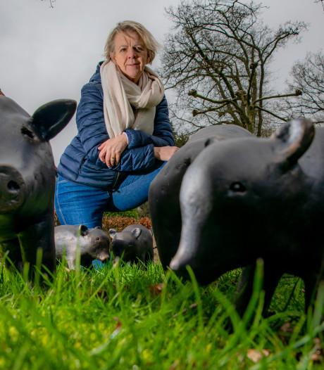 Hoe een 1 aprilgrap van de Apeldoornse burgemeester het plan van kunstenares Tine doorkruiste