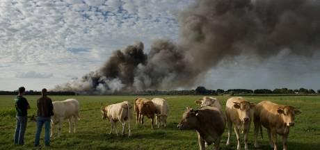 Na de horrorbrand lijkt het erop dat Straathof nog niet te stoppen is