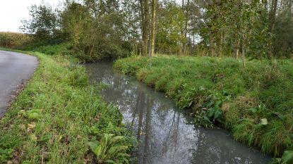 Private riolering in kaart voor sanering Wijzerbeek