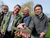 Bijl uit prehistorie duikt op in Needse tuin: 'Wat is dat voor gek ding?'