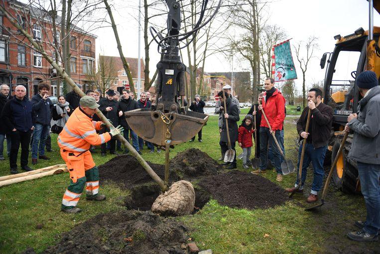 De mannen van '79 gaven alvast het goede voorbeeld. Bij wijze van stunt -zoals de traditie het wil- plantten ze recentelijk negen nieuwe bomen op de E. Ruelensvest.