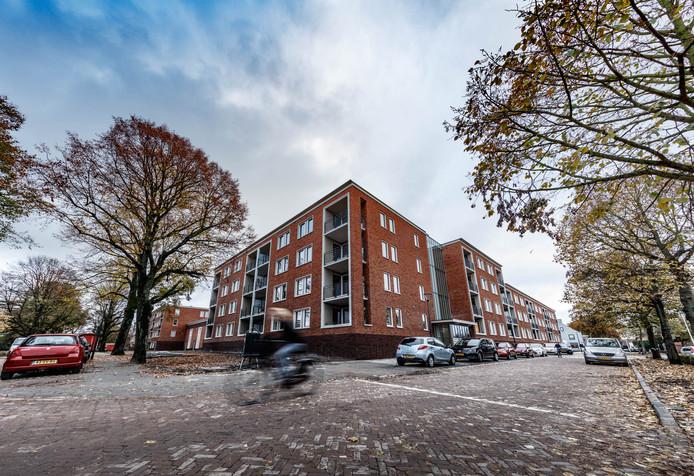 Nul op de meter, gasloos en levensloopbestendig. Zo bouwt Stadlander tegenwoordig zoals hier aan de Vijverberg in de wijk Gageldonk-West in Bergen op Zoom.