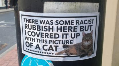 Lorenzo de kat gaat strijd aan tegen racisme