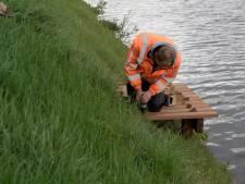 Nieuwe steigers langs Ommerkanaal behoeden vissers voor nat pak