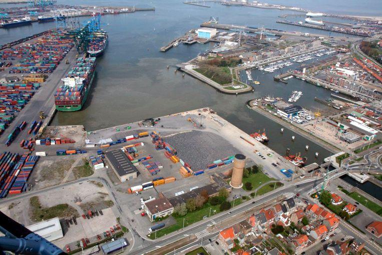 De haven van Zeebrugge blijft voor veel politici een belangrijk punt.