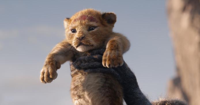 Bij onder meer de bioscopen Kinepolis Jaarbeurs en Pathé Leidsche Rijn is vandaag de première van Disneyfilm The Lion King middenin de nacht te zien.