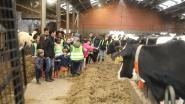 320 kinderen op schooluitstap naar boerderij