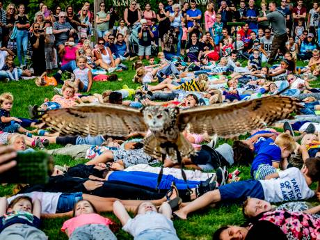 Documentaire: 'Maak een eind aan roofvogelshows en het gevangen houden van uilen'