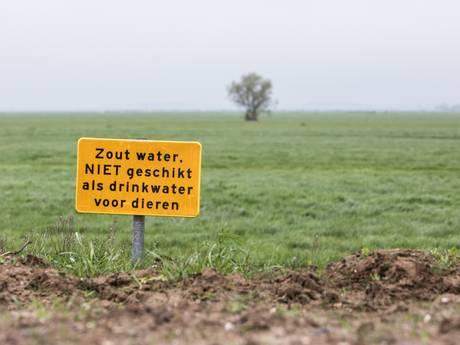 Kilometerslange vervuiling langs versterkte Westdijk