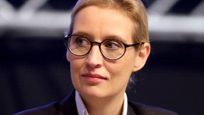 Fractieleidster extreemrechtse Duitse AfD ontving significante donatie uit België