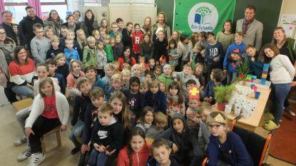 De Sterrebloem hijst Groene Vlag en wordt ECO-school
