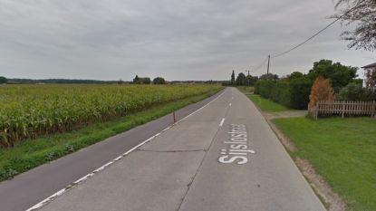 Studie rond werken in Sijslostraat van start: gemeente wil nieuwe fietspaden aanleggen en wegdek vernieuwen