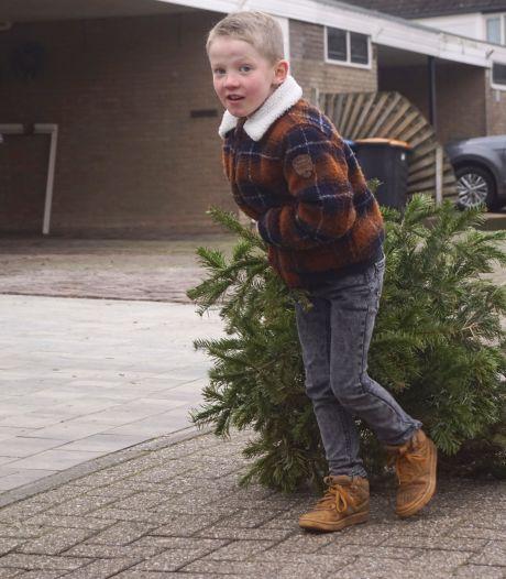 Onvrede bij VVD over inleveren kerstbomen in Molenlanden