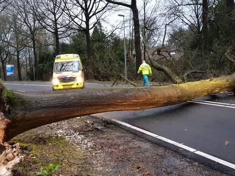 LIVE: Winterstorm raast over de regio, code rood voor Gelderland