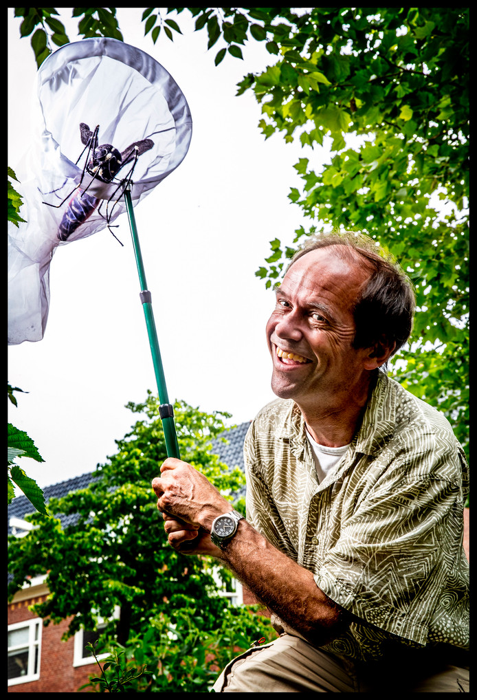 Wilfred Reinhold poseert met een model van de tijgermug Foto ; Pim Ras