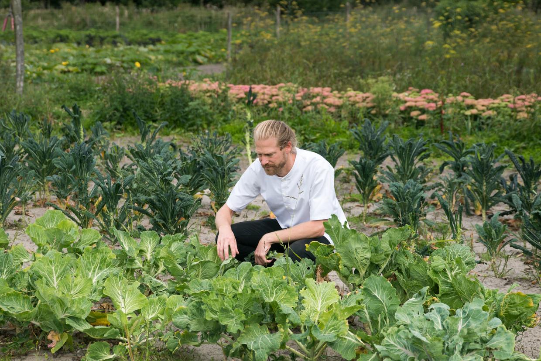 Chef-kok Steven Broere van Kadeau in zijn groentetuin.