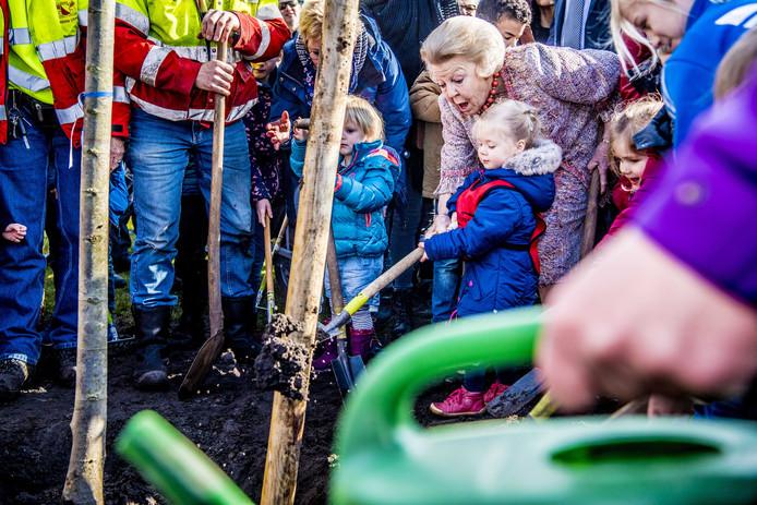 Prinses Beatrix plant een koningslinde in het Utrechtse Griftpark. De boom is aan de prinses aangeboden door 'In Vrijheid Verbonden', een netwerk van religies en levensbeschouwingen. Foto Robin Utrecht