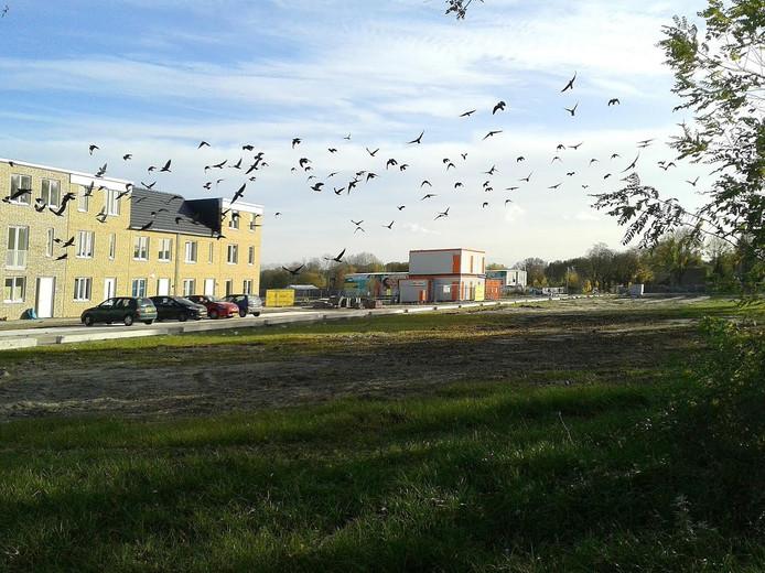 Het nieuwe bouwblok in Tilburg is nog omgeven door woekerend groen.