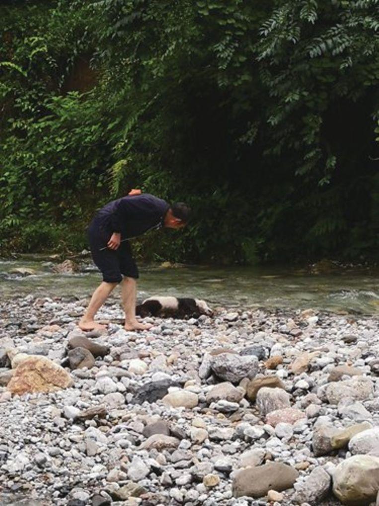 Het plaatselijke bos- en natuurdepartement vond de babypanda dinsdagnamiddag naast de kabbelende stroom.