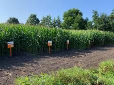 10.000 bezoekers verwacht op eerste vakbeurs voor agrariërs in Hilvarenbeek