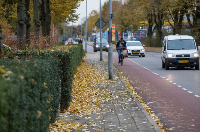 Herfstbladeren beginnen het straatbeeld te bepalen in Ede.