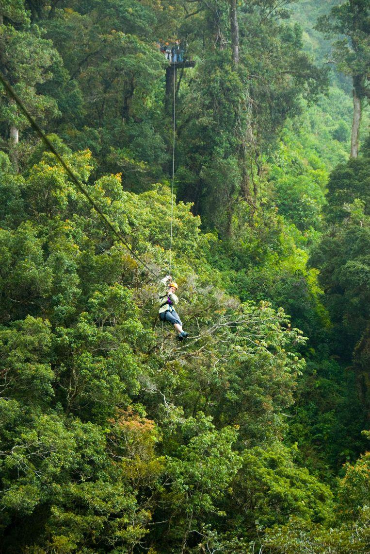 Een vrouw daalt een kabelbaan af in een bos in Panama (archieffoto).