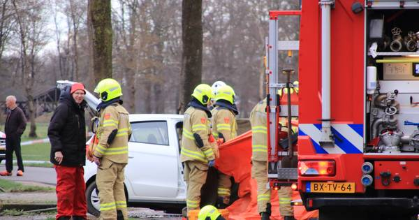 Automobilist overleden na botsing tegen boom in Harskamp.